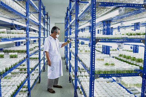 bioplanttech